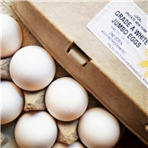 A&V Cage Free Jumbo White Eggs