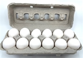 A&V Extra Cage Free Large White Eggs