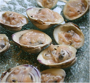 Shucked Little Neck Clams